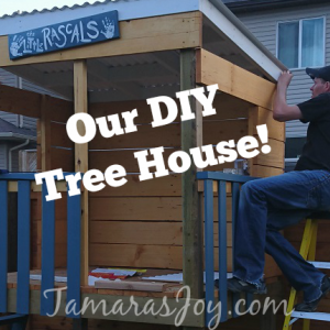 DIY Tree House/clubhouse